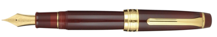 Stylo-plume Sailor King Professional Gear Earth